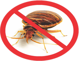Pest Control Orlando- Bed bug exterminator Orlando- Affordable bed bug treatment using heaters