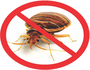 Pest Control Orlando fl - How to get rid of bed bugs?  An orlando fl bed bugs company near you will be very expensive.  Affordable pest control in orlando is here!  Bed Bugs Florida for renting a bed bug heater.